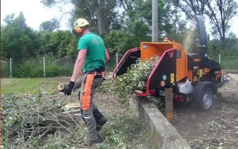 Veszélyes fák kivágása-Ágdarálás-Zöldterület kezelés